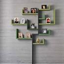 Family-Tree-estantes