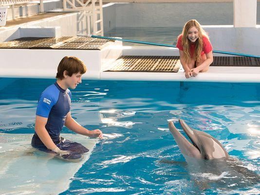 Imagen vía: Delfín web