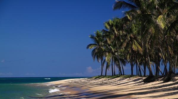 foto-playa-brasill